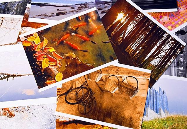 30 Fotos (10 x 15cm)